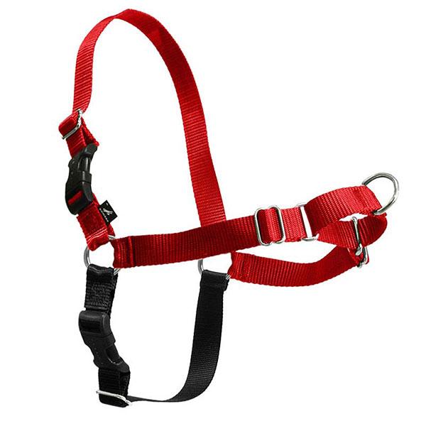 Dog Harnesses