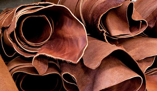 The Origin of Leather