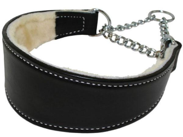 Martingale collar